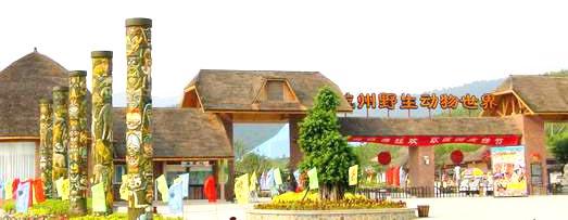 五一杭州野生动物园一日游