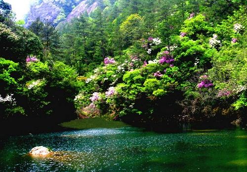 杭州出发到临安白水涧旅游_临安白水涧一日游