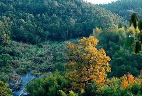 禾山风景区位于104国道和同三高速公路旁