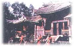 勐卧佛寺双塔