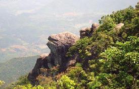 松溪白马山自然保护区