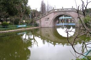 浦东滨江森林公园