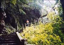 天童国家森林公园