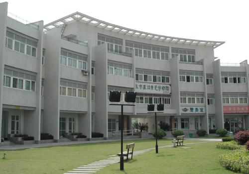 处州青瓷博物馆