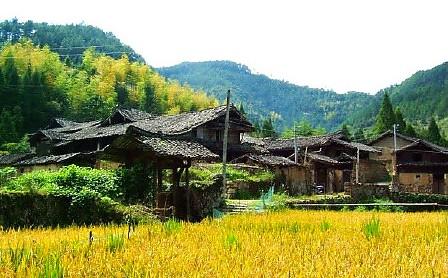 徐岙古村落