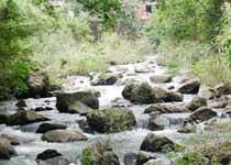 石门森林公园