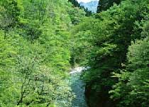 宋山森林公园
