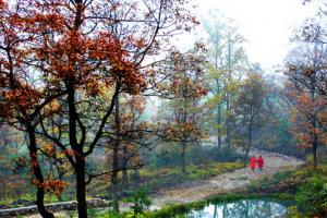玉舍森林公园