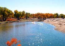 黑河流域自然保护区