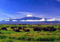 内罗毕国家公园