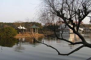 上海濱海旅游度假區