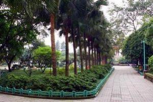 重庆枇杷山公园