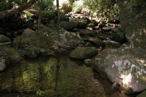 石门洞森林公园