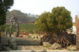 中国·根博园