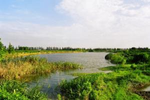 瀛东村东湖