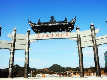 乌云山茶叶公园