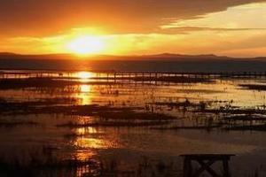 达里湖—北岸景区