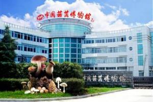 中国菇菌博物馆