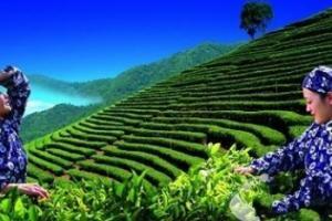 梅州灵光寺