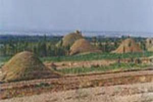 朔州梵王寺墓群