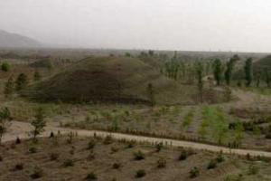 马邑汉墓群