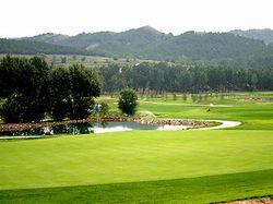 维信国际高尔夫