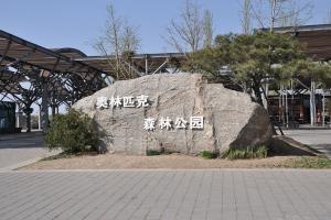奥林匹克森林公园