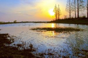扬州登月湖