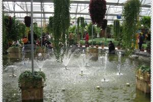 合肥丰乐生态园