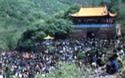 淮北古茶镇