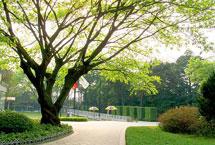 郴州北湖公园