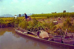 古桂柳运河