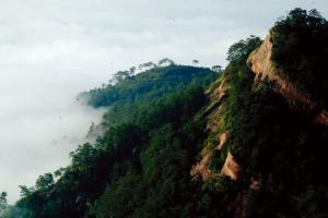广西梧州石表山