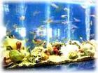 北海水族馆
