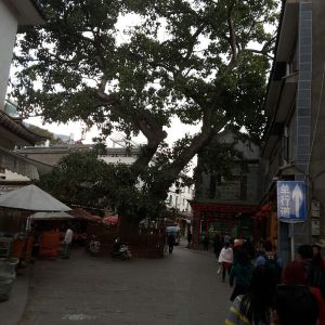 大理十八里铺茶马古道文化驿站
