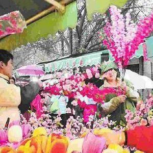 园林花卉市场