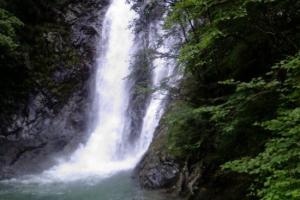 """""""世界自然与文化遗产""""的武夷山是地球同纬度带最完整、最典型、面积最大的中亚热带原生性森林生态系统,更有着极为悠远的历史遗存和相当深厚的文化积淀。 武夷源生态旅游区就坐落于这样一个""""人间仙境""""之中,即武夷山脉主峰—黄岗山的东南麓、武夷山核心风景区的西侧;地理坐标:北纬27?36′13″,东经117?44′11″;东起狮子峰沿莲花谷至白塔山,北至东北源溪谷和杨梅泉溪谷,西南抵建阳界及狮子峰外南山一段莲花溪溪谷,总面积46km?。取内山峻坡陡,风峦叠嶂,秀瀑媚涧,飞溅奔流,古物遗迹,千古流悠,被称为武夷山自然保护区的""""缩影"""",风景名胜区的""""后花园"""",既可登高揽胜,又可探幽访古,是个休闲、游览的绝胜之处。"""