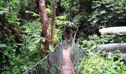 中亚热带自然保护区