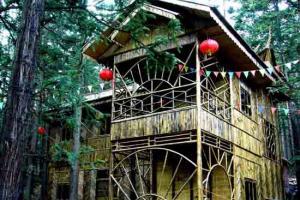 毕节赫章国家森林公园