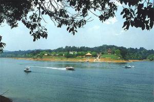 金塔鸳鸯湖