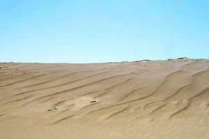 古爾班通古特沙漠