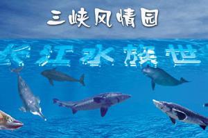宜昌长江水族世界