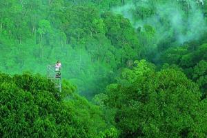 淡布隆国家公园